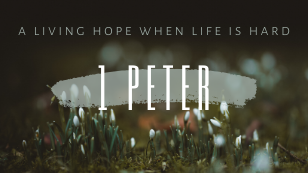 1 Peter: A Living Hope When Life is Hard