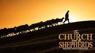 The Church and its Shepherds: How the Church is Structured